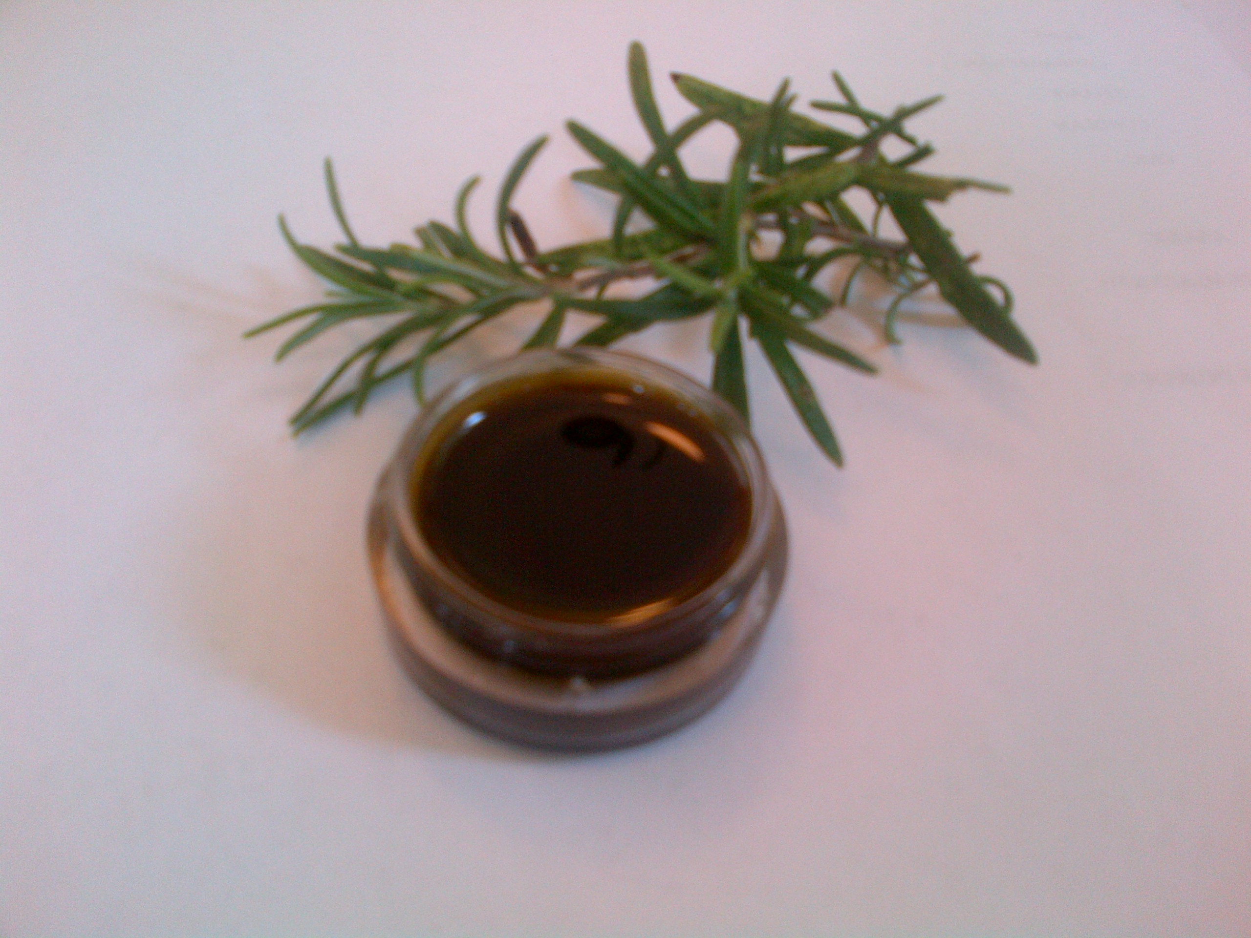 Rosemary Extract Paste